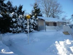 Chata zima II